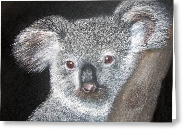 Cute Koala Greeting Card