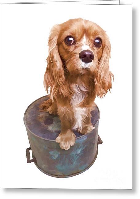 Cute Puppy Card Greeting Card by Edward Fielding