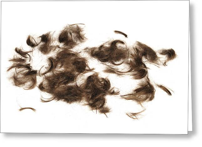 Cutted Brown Hair Greeting Card by Matthias Hauser