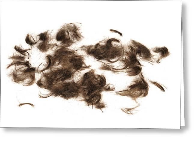 Cutted Brown Hair Greeting Card