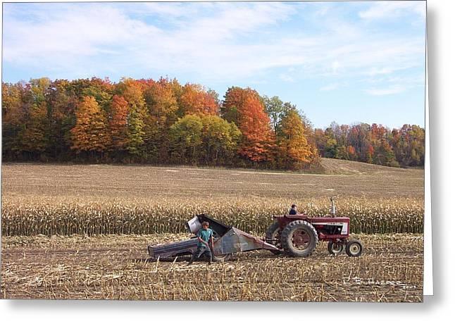 Cutting The Corn Greeting Card