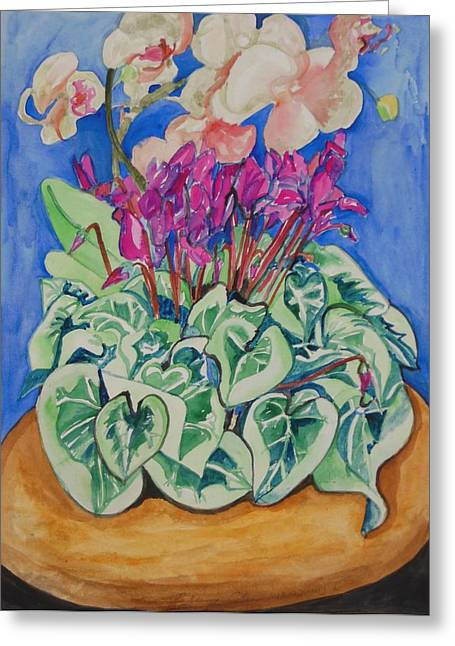 Cyclamen And Orchids In A Flower Pot Greeting Card