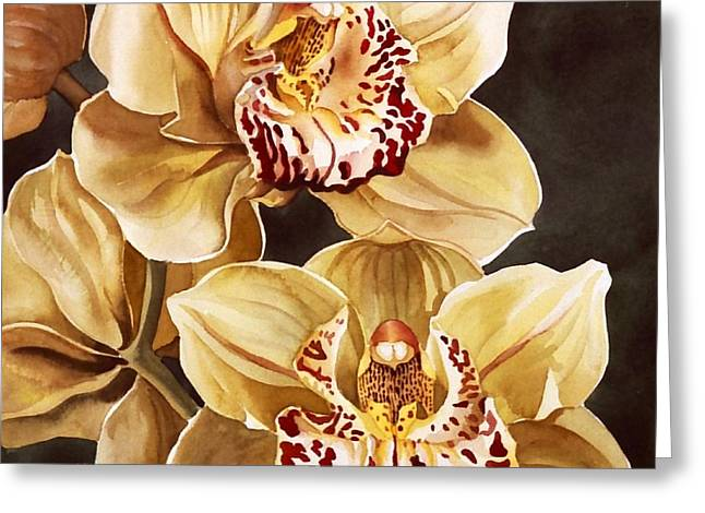 Cymbidium Orchids Greeting Card by Alfred Ng