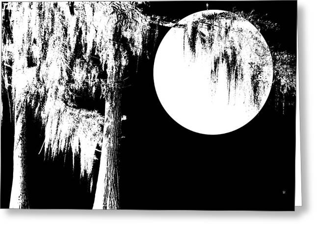 Cypress Moon Greeting Card by Betty Northcutt