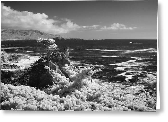 Cypress Point Ll Greeting Card