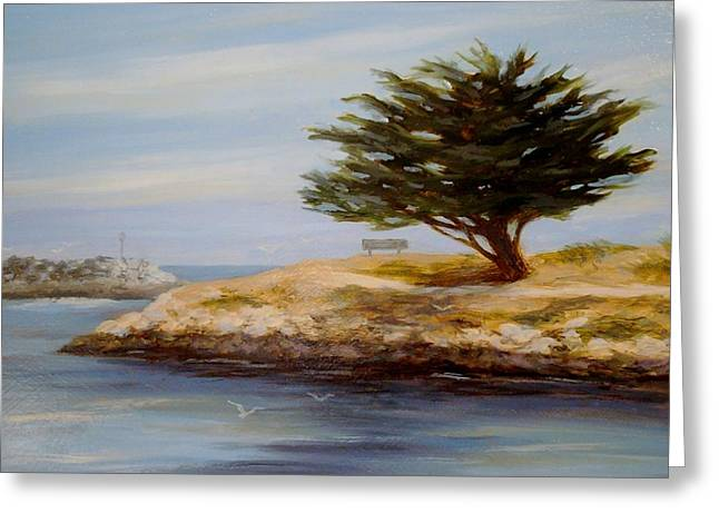 Cypress Tree At Marina Park #2 Greeting Card by Tina Obrien