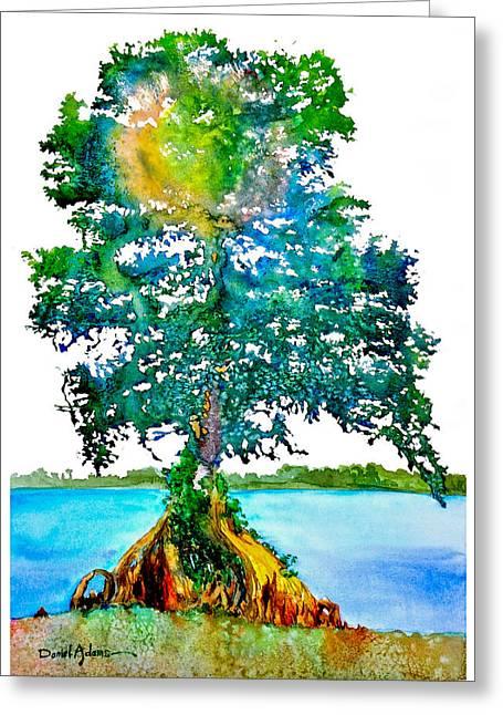 Da107 Cypress Tree Daniel Adams Greeting Card