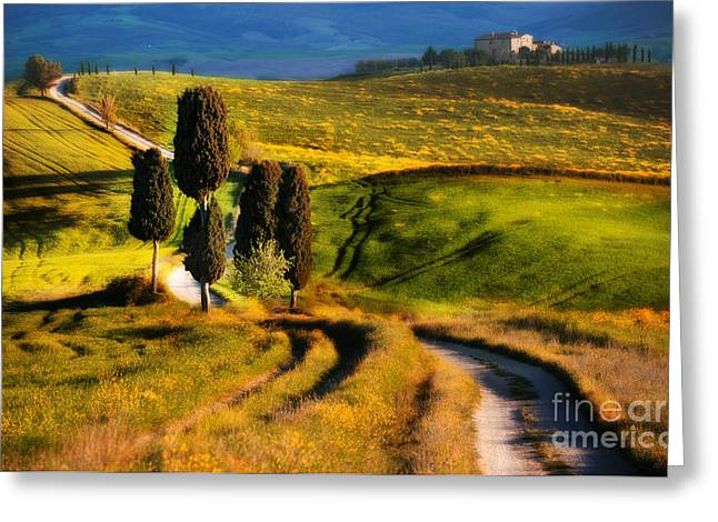 Cypresses Of Toscany Greeting Card by Jaroslaw Blaminsky