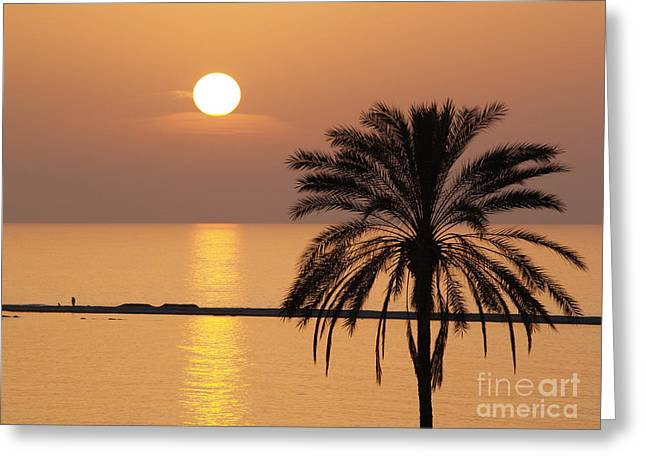 Cyprus Sunset Greeting Card by Alex Cassels