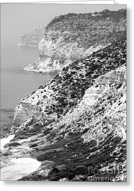 Cyprus View - Black And White Greeting Card by John Rizzuto