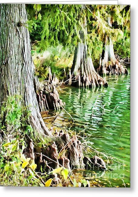 Cyrpess Tree Knees Digital Paint Greeting Card by Debbie Portwood