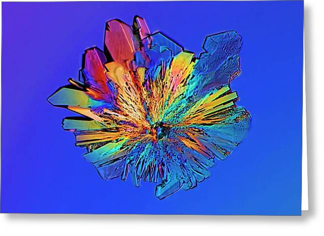 Cysteine Crystal Greeting Card by Antonio Romero