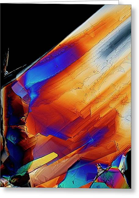 Cysteine Crystals Greeting Card by Antonio Romero