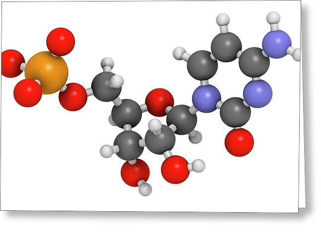Cytidine Monophosphate Molecule Greeting Card by Molekuul