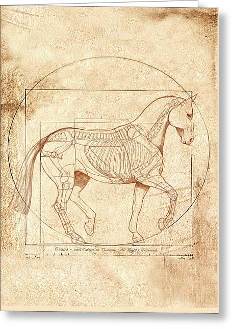 da Vinci Horse in Piaffe Greeting Card