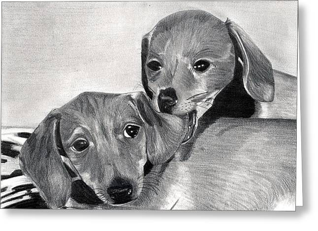 Dachshund Puppies Dog Portrait  Greeting Card by Olde Time  Mercantile