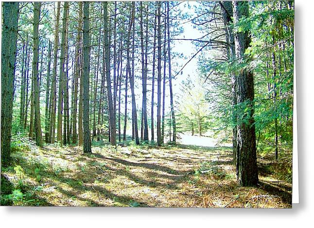 Dad's Woods I Greeting Card by Shirley Moravec