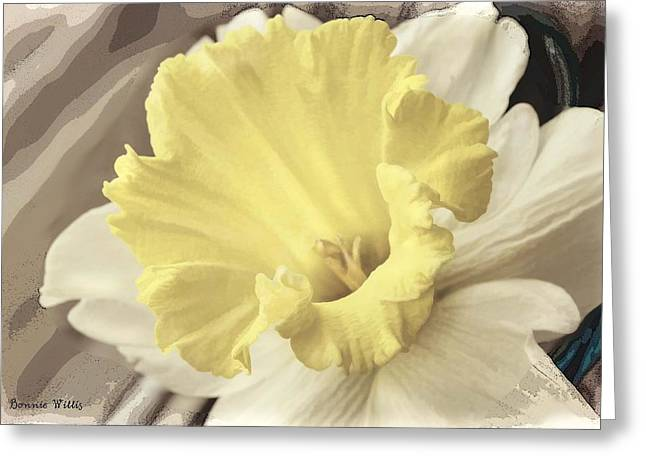 Daffadil In Yellow And White Greeting Card