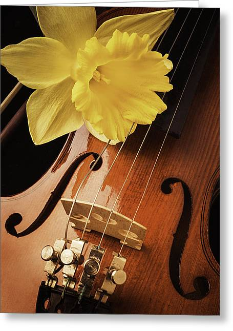 Daffodil And Violin Greeting Card by Garry Gay