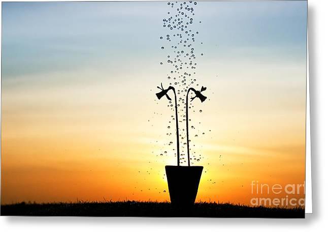 Daffodil Dawn Greeting Card by Tim Gainey