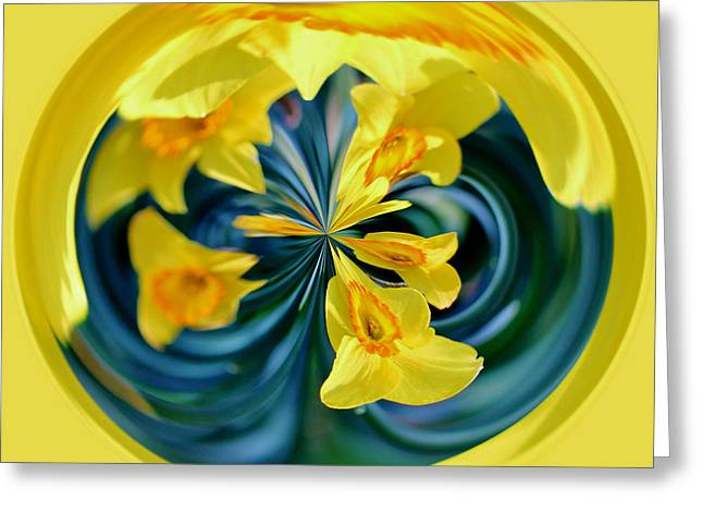 Daffodil Orb Greeting Card by Cynthia Guinn