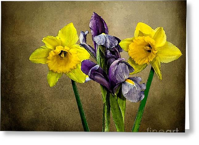Daffodils And Iris Greeting Card