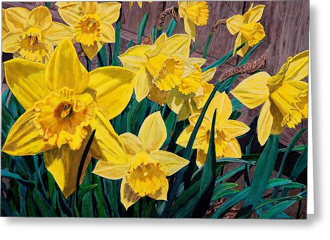 Daffodils Greeting Card by Charlie Harris