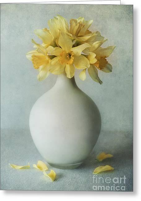 Daffodils In A White Flowerpot Greeting Card by Jaroslaw Blaminsky