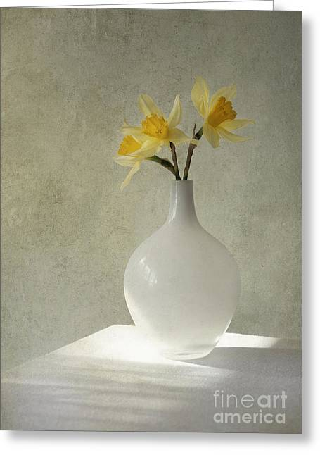 Daffodils In White Glass Flower Pot Greeting Card by Jaroslaw Blaminsky