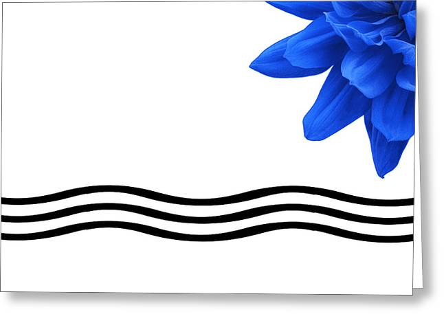 Dahlia Flower And Wavy Lines Triptych Canvas 3 - Blue Greeting Card by Natalie Kinnear
