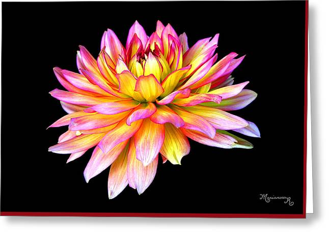 Dahlia Greeting Card by Mariarosa Rockefeller