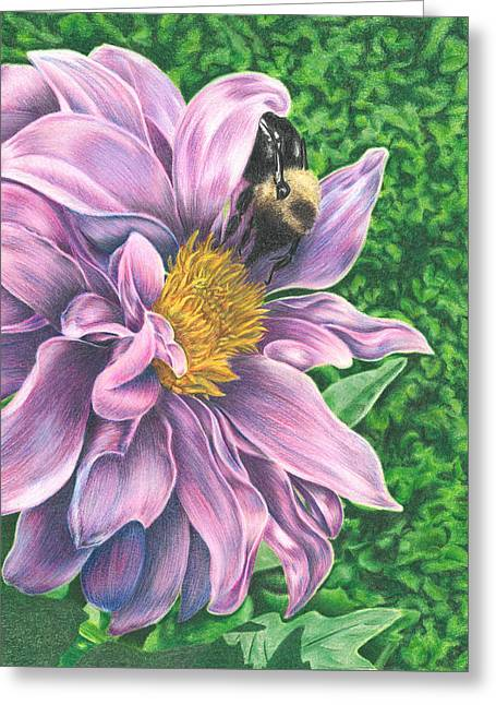 Greeting Card featuring the drawing Dahlia by Troy Levesque