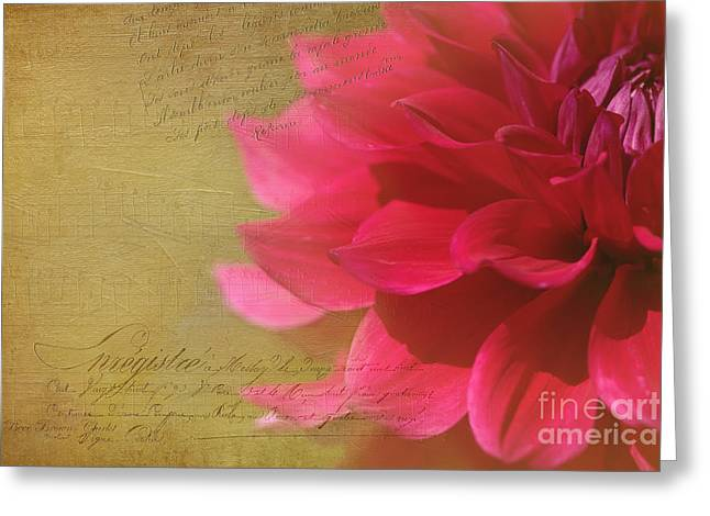 Dahlias Finest Moment Greeting Card by Beve Brown-Clark Photography