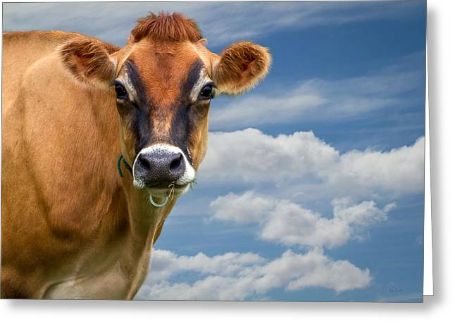 Dairy Cow  Bessy Greeting Card
