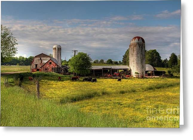 Dairy Land  Greeting Card