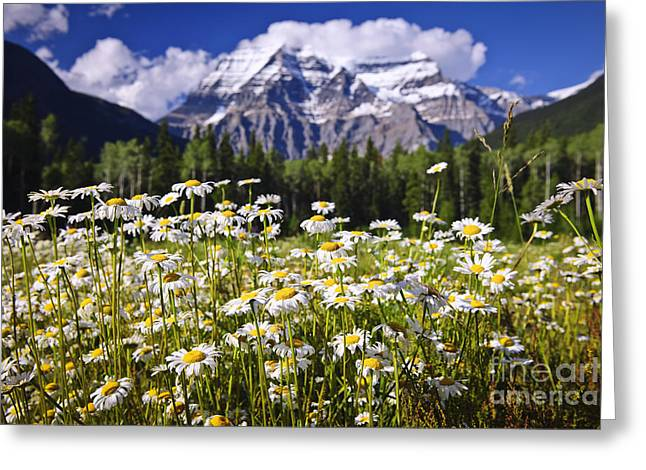Beautiful Scenery Greeting Cards - Daisies at Mount Robson Greeting Card by Elena Elisseeva
