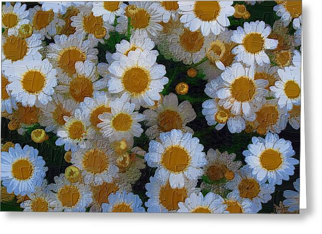 Greeting Card featuring the photograph Daisies by Diane Miller