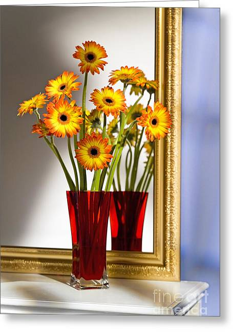 Daisies In Red Vase Greeting Card by Tony Cordoza