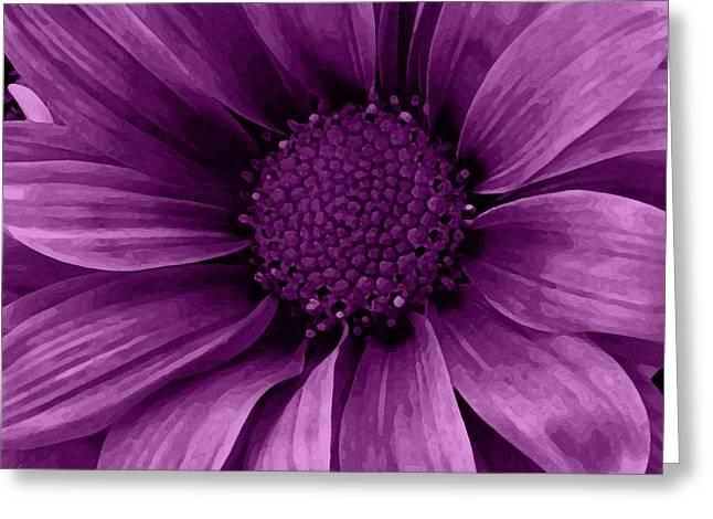 Daisy Daisy Grape Greeting Card by Angelina Vick