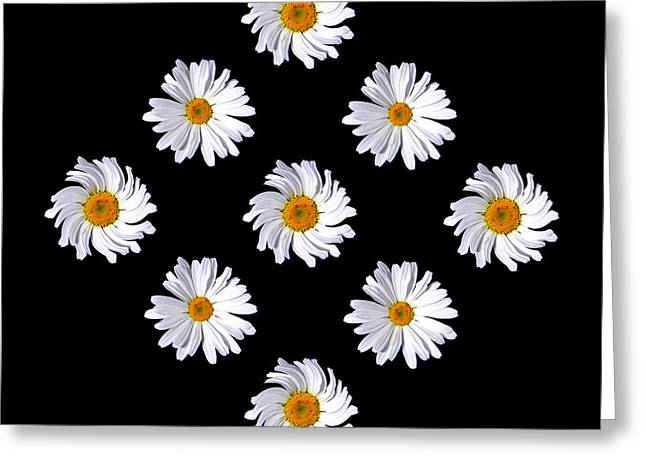Daisy Diamond Greeting Card by James Hammen