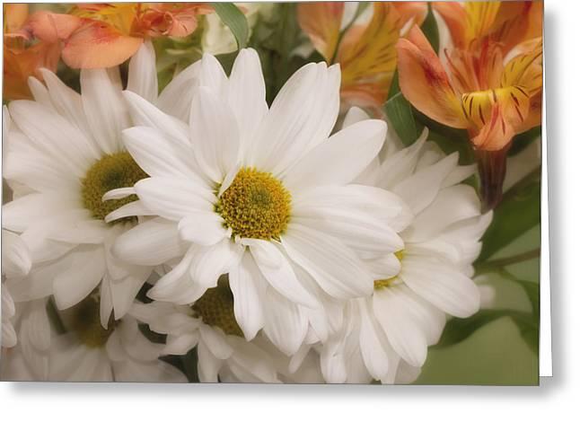 Daisy Do Greeting Card by Kim Hojnacki