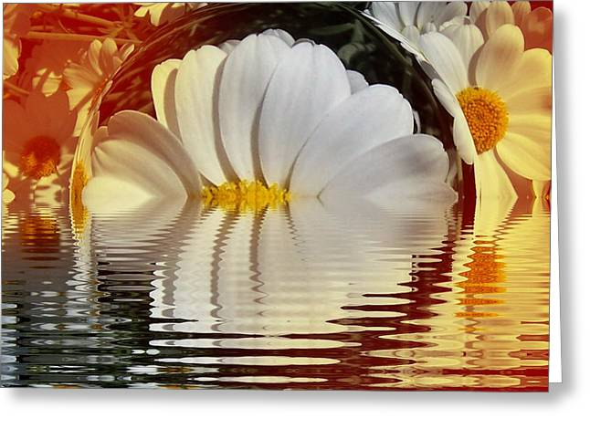 Daisy Fractal Greeting Card by Nancy Pauling