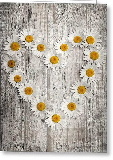 Daisy Heart On Old Wood Greeting Card by Elena Elisseeva