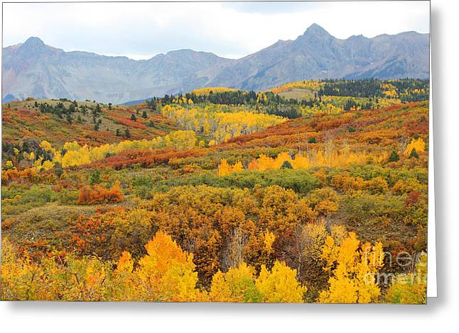 Dallas Divide In The Fall Greeting Card