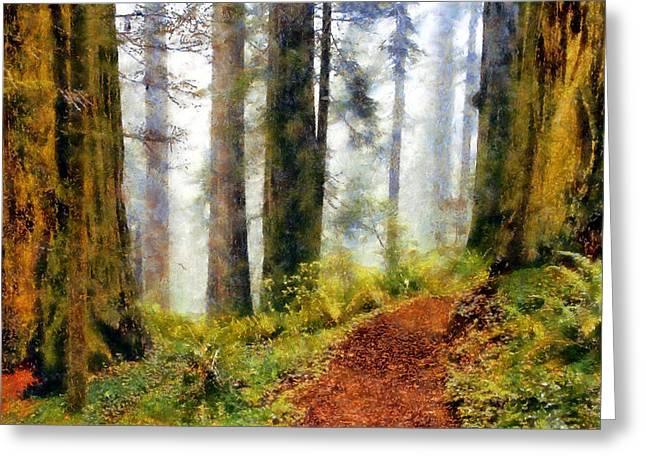 Damnation Creek Trail Greeting Card
