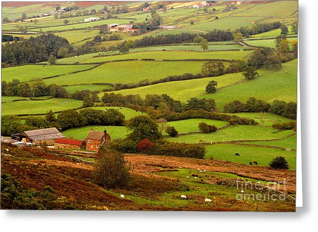 Danby Dale Yorkshire Moors Greeting Card