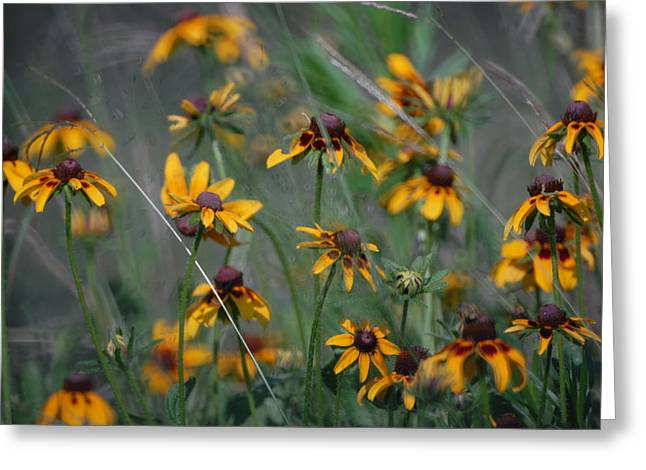 Greeting Card featuring the photograph Dance Of Flowers by Susan D Moody