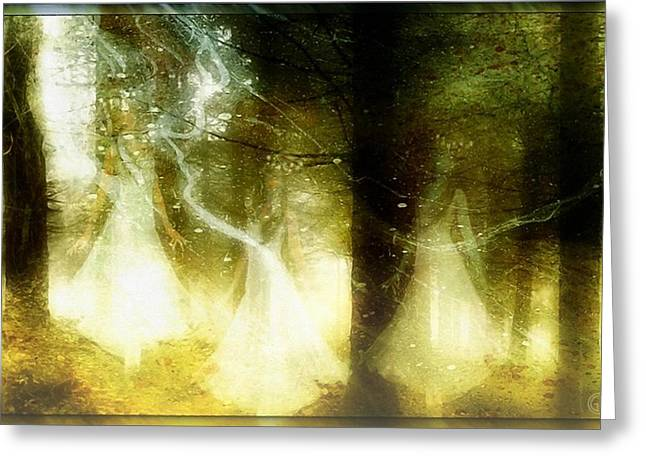 Dance Of The Fairies Greeting Card by Gun Legler