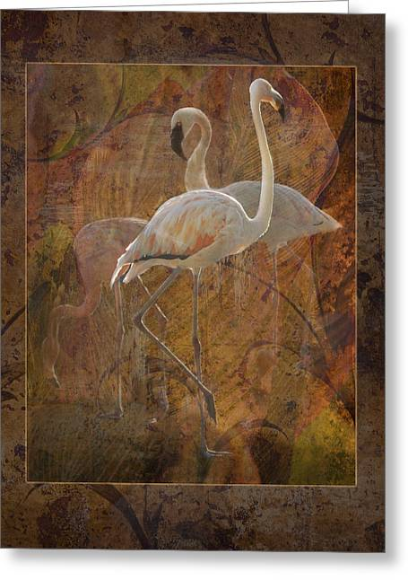Dance Of The Flamingos Greeting Card