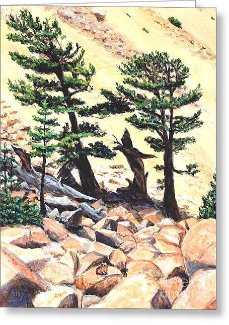 Dancing Bristlecone Greeting Card